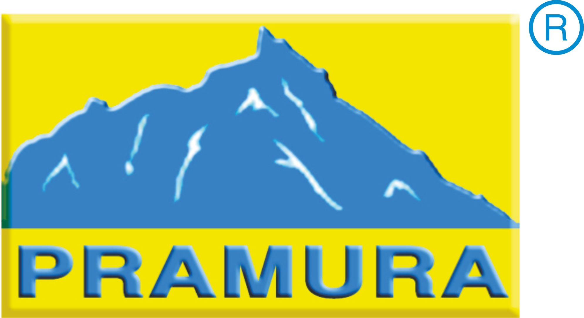 Pramura Software Pvt.Ltd.